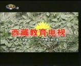 西藏电视台天天健康节目